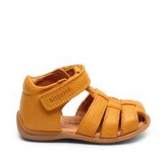 bisgaard carly amber